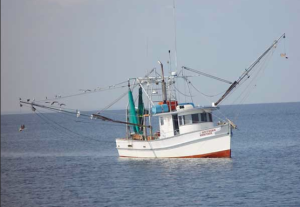 Shrimp Boat Photo Courtesy of NOAA