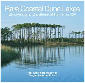 Rare Coastal Dune Lakes by Ginger Sinton