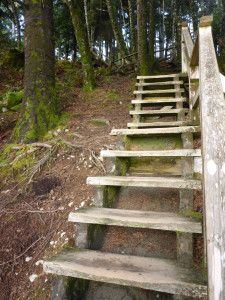 Purdy Short Stairs