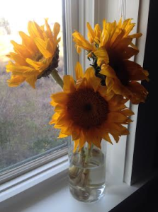 Leslie Kolovich's flowers after stay in hospital for heart