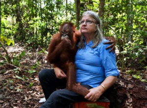Dr Birute Galdikas pleas for people to stop using palm oil