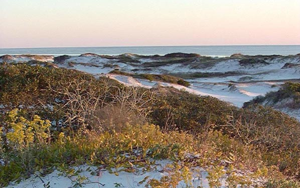 Beautiful Dunes At Topsail Preserve State Park-SUP Radio