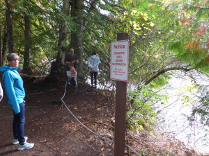 Adams River Salmon Run Standing Up for the Planet by Bob Purdy-SUP Radio